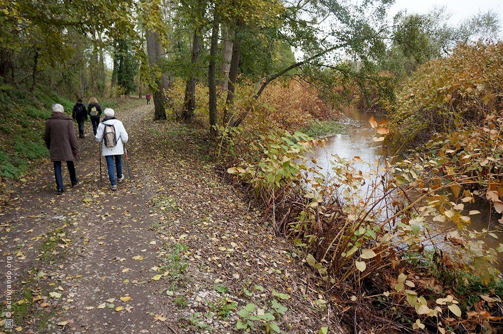 Chemin le long de la rivière Mourgon